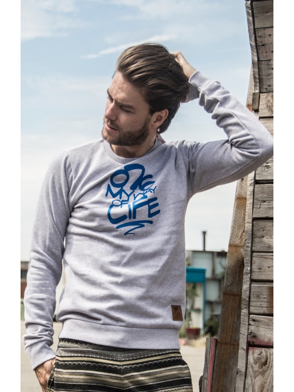 Sweater Grijs | 076MWOL blauw